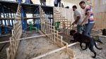 Amid CM Mamata's assembling panel worker dies