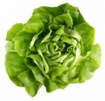 Lettuce -- Why You Should Eat it?