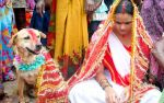 Alas! These Have To Be Stopped..Here Are 6 Heart Scorching Rituals Of India