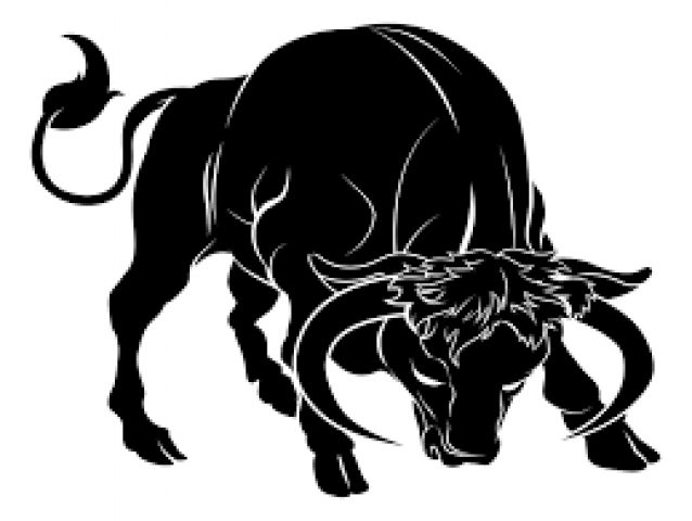 Know the career and business life of Taurus