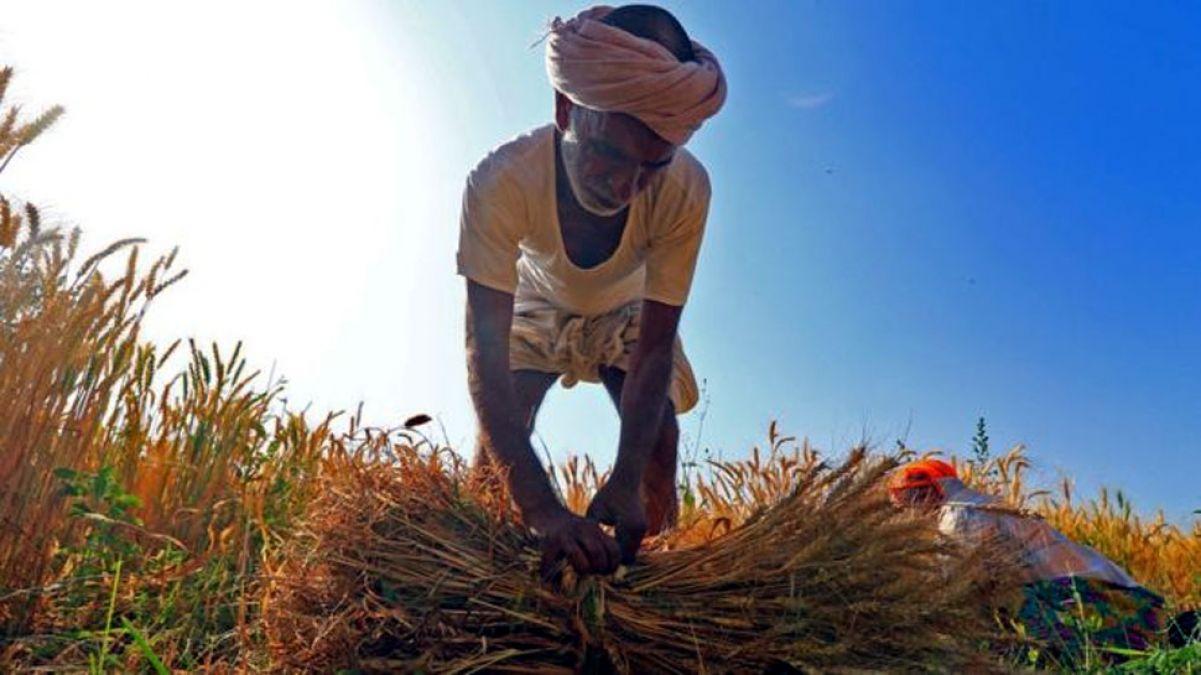 निज़ामाबाद लोकसभा सीट: चुनावी समर में कूद पड़े हैं 178 किसान, सीएम की बेटी से है मुकाबला