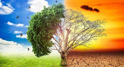 पृथ्वी दिवस: झुलस रही पृथ्वी, बढ़ रहा खतरा