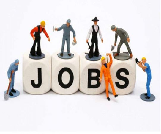 मनरेगा विभाग के जिला पंचायत में सरकारी नौकरियों कि लिए करें आवेदन