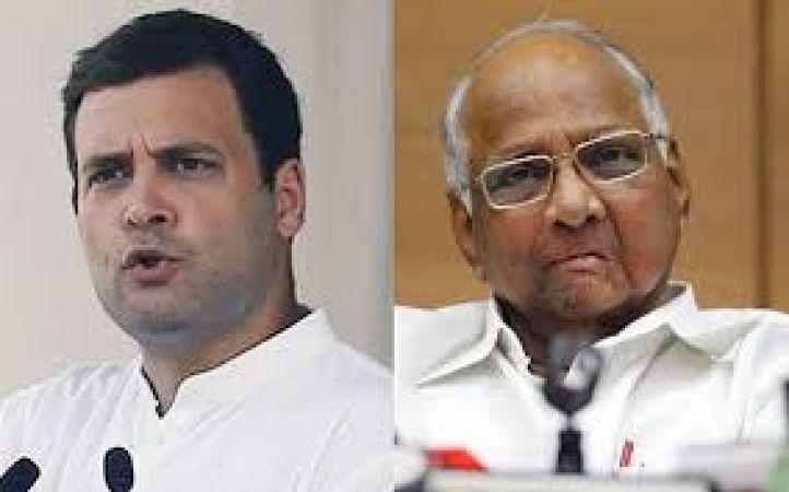 2019 चुनाव: कांग्रेस-एनसीपी में सीट को लेकर मारामारी शुरू, एनसीपी मांग रही आधी सीटें