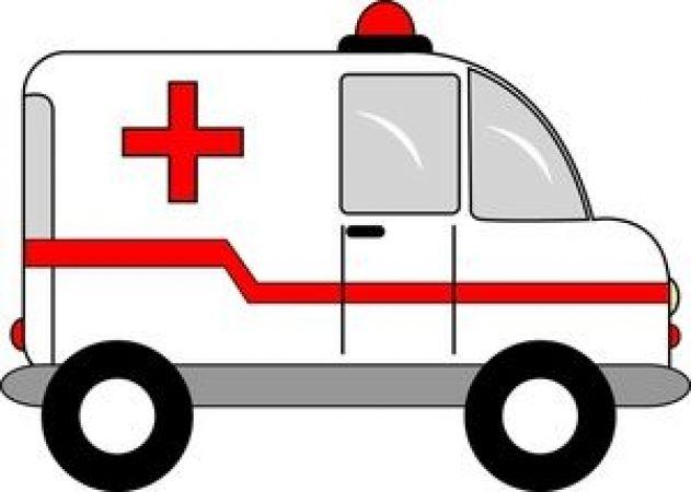 इलाज करने जा रहे डॉक्टरों की एम्बुलेंस खाई में गिरी, कई डॉक्टर घायल