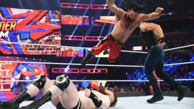 What happen in the world of WWE in the year 2017? Have a look.