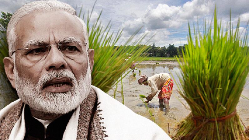 आज गोरखपुर से होगा प्रधानमंत्री किसान सम्मान निधि का शुभारंभ, किसानों के खाते में जाएगी पहली किश्त
