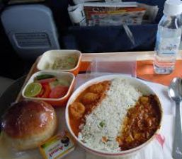 Morphine found in Air India food trolley, probe initiated