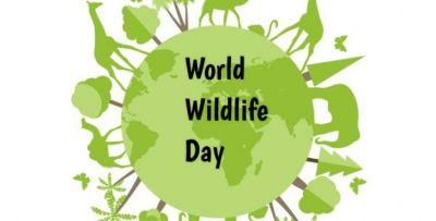 विश्व वन्यजीव दिवस: लुप्त होते जीवों को बचाने के लिए की गई एक पहल