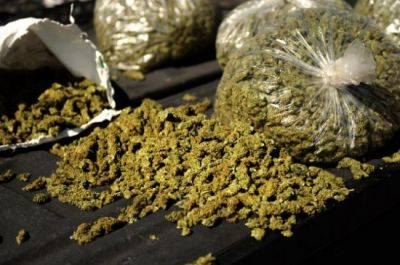 Hyderabad: 3 men arrested with 40 kgs marijuana