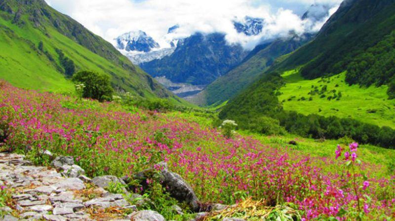 1 जून से पर्यटकों के लिए खुल जाएगी विश्व प्रसिद्ध फूलों की घाटी, बिछी हुई है बर्फ की चादर