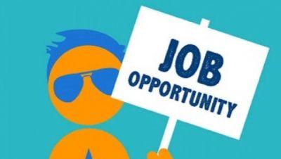 डिप्लोमा पास के लिए सरकारी नौकरी का सुनहरा मौका, पढ़ें पूरी खबर