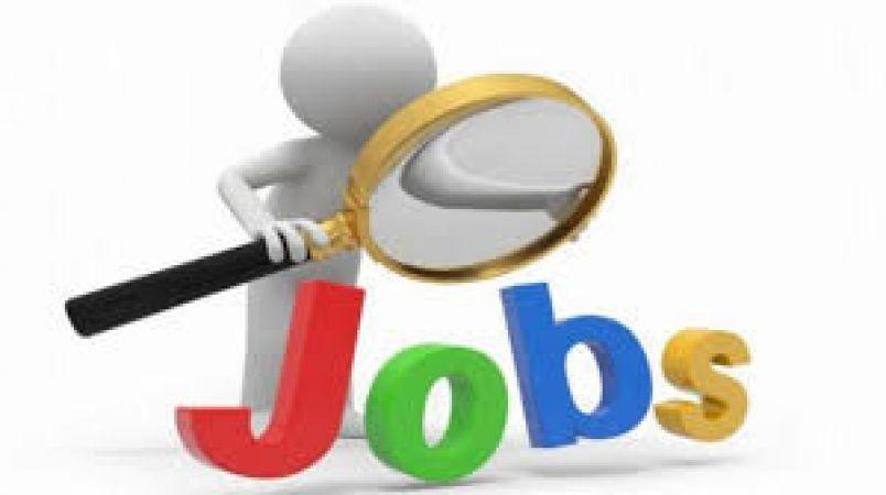 12वीं पास के लिए नौकरी का शानदार अवसर, इस विश्वविद्यालय में करें आवेदन