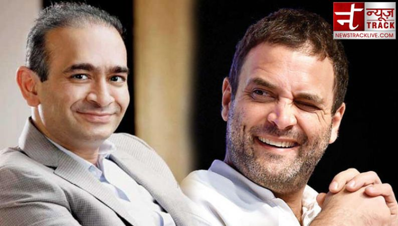 शहजाद पूनावाला का दावा, नीरव की कॉकटेल पार्टी में गए थे राहुल गाँधी