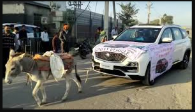 Owner gets donkeys to pull MG Hector, video goes viral