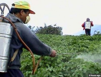 Government to send fake pesticide makers and sellers to jail, will introduce pesticide management bill