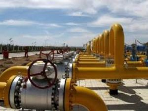 Government cut domestic natural gas prices