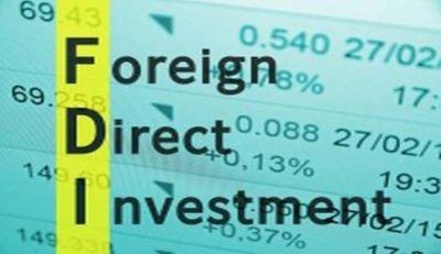 DNPA welcomed FDI in digital media sector