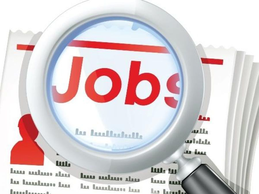 Declining government jobs, private sector increases, read report