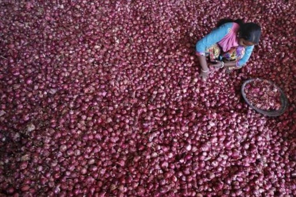 MMTC made a big announcement, India will not import onions from Pakistan