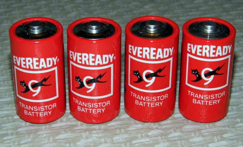 भारतीय बैटरी कंपनी एवरेडी को खरीदेगा दुनिया के सबसे रईस व्यक्तियों में शुमार यह शख्स