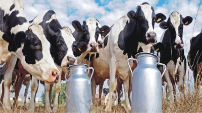 Government will give prominence to the interests of farmers in foreign trade agreements