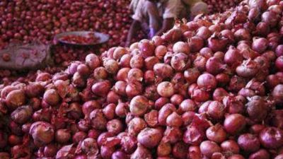 Onion will not make you cry in new year, price drop