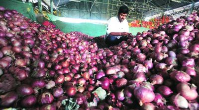 Onion prices may fall; 6,090 tonnes consignment coming soon from Egypt