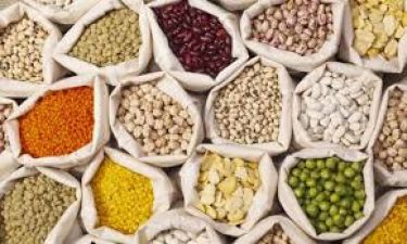 Pulses production difficult to maintain, know reasons