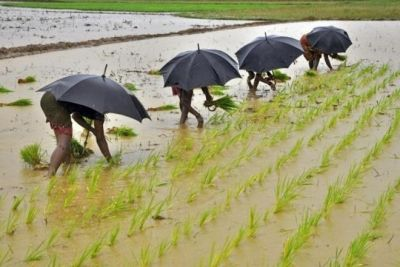 This time there will be bumper yield in Kharif season, know reasons!