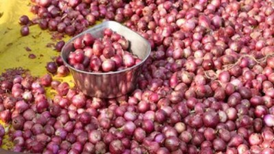 Indian Government allows Bangladesh to export onions