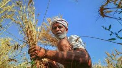 RBI has taken this step to bring transparency in payments to farmers
