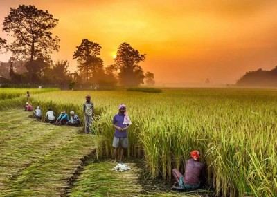 RBI decides to enhance the loan on produce pledges for individual farmers