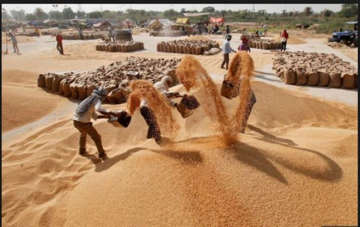 Government to raise its import duty on Wheat to support farmers