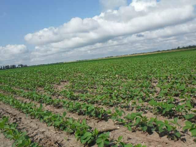 मानसून से मिलेगी किसानो को राहत