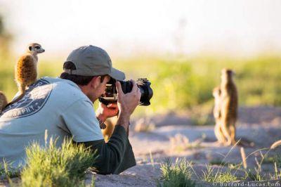 वाइल्ड लाइफ फोटोग्राफी में करियर बनाकर, पाएं एक बेहतर जॉब