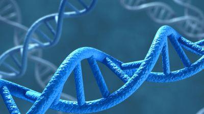 जीव विज्ञान के कुछ महत्वपूर्ण प्रश्नोत्तर