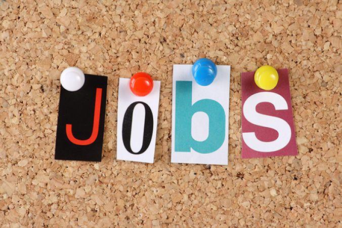 मैनेजर पद पर नौकरी का सुनहरा अवसर, ग्रेजुएट करे आवेदन