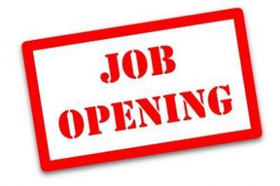 Central warehousing corporation : सलाहकार के पदों पर कर आवेदन, आकर्षक वेतन