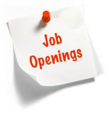 Job Opening for Young Professionals Positions, Salary Rs 15,000