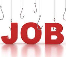 RBI Raipur: Recruitment for the post of Medical Advisor, Apply soon