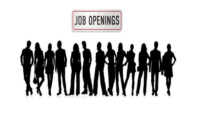 2017 में होगीं भर्तियां -रोजगार पाने का सुनहरा अवसर