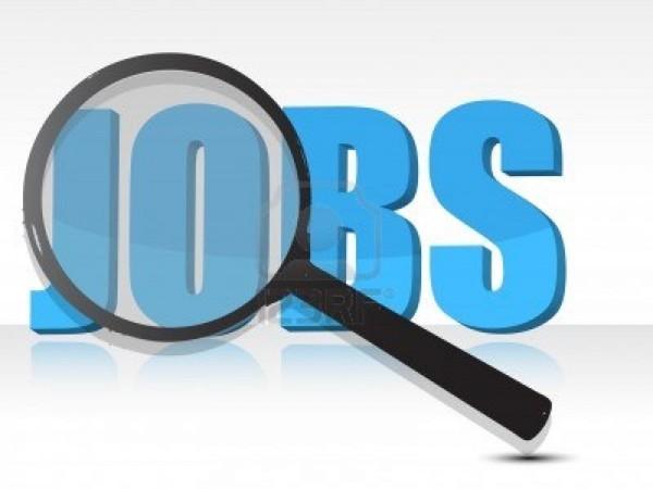 लोकसभा सचिवालय में नौकरी पाने का बेहतरीन मौका, मिलेगा 90 हजार तक वेतन
