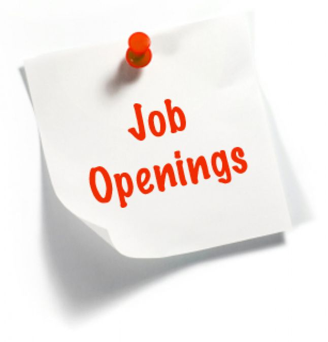 Opening job in the posts of Professor, Assistant professor, will get an attractive salary