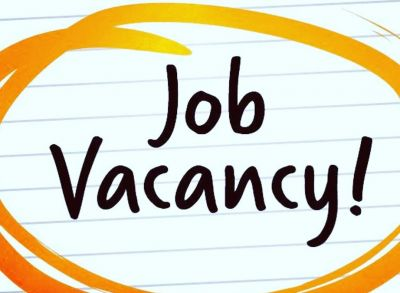 Vacancies on the positions of Project Fellows, will get attractive salary