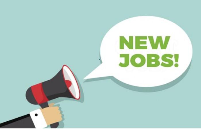12वीं पास युवाओं के लिए सरकारी नौकरी पाने का सुनहरा मौका, जल्द यहां करें आवेदन