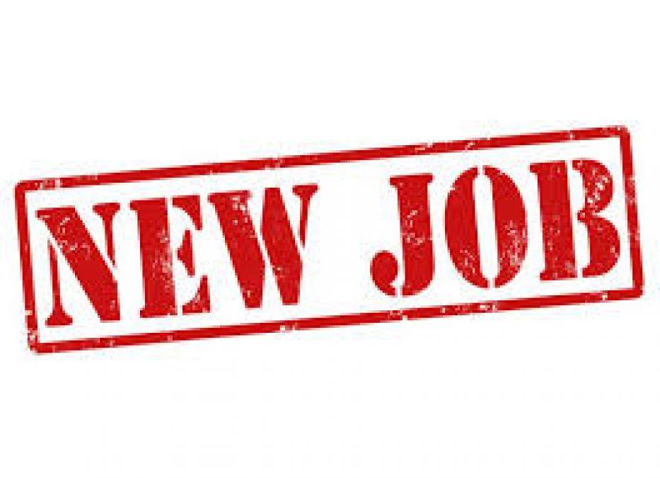 बिजली वितरण कंपनी में नौकरी पाने का सुनहरा अवसर, ऐसे करें आवेदन