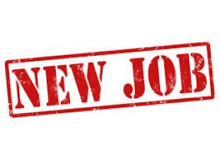 Golden opportunity to get job in electricity distribution company, Here's how to apply