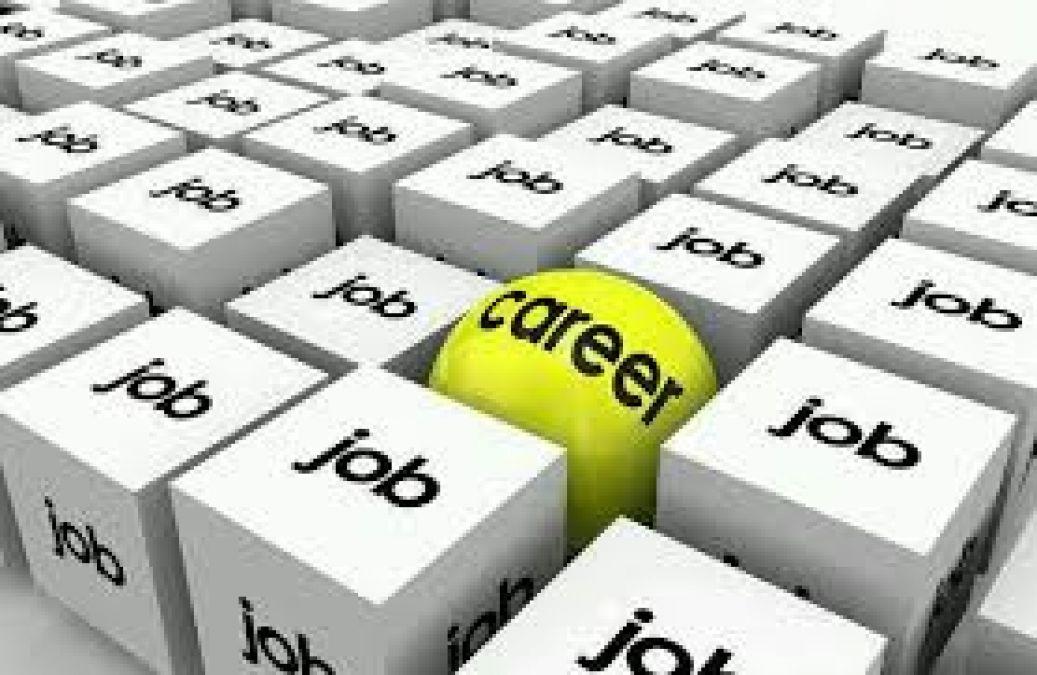 शोध सहयोगी के पदों पर जॉब ओपनिंग, जानिए चयन प्रक्रिया