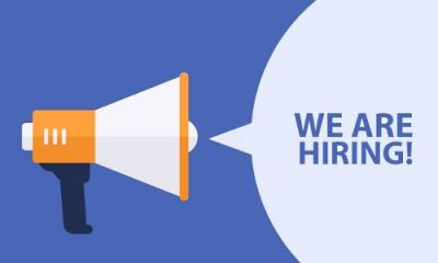 Vacancy in the positions of consultant scientist, this is the last date to apply!